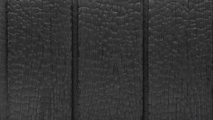 Charred wood facade