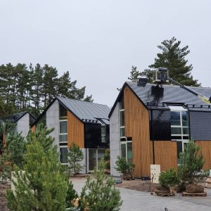 Charred wood pine cladding in exterior